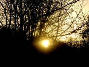 RETURNING SUN 2015 Winter Solstice